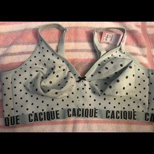 Lane Bryant Cacique bra 48DD cotton